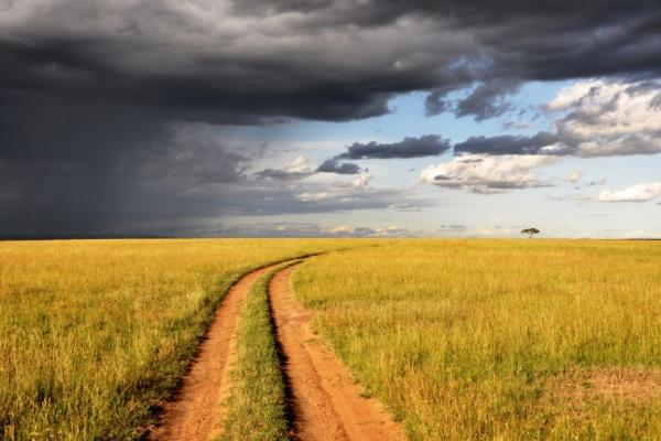 Comment trouver ton chemin de vie dans ce monde du tout possible?